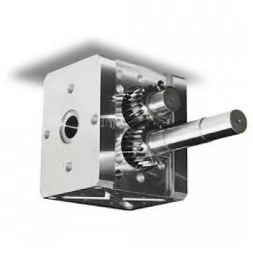 KRACHT Kf 25 RF 1 Pompa a Ingranaggi Pompa KF25RF1