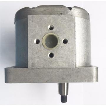 Ingranaggi per Pompa olio motore Fiat 1100/103