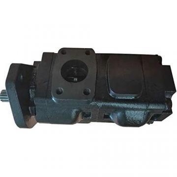 Originale Parker / Jcb 3CX Doppio Pompa Idraulica 20/912800 33 + 29cc/Rev IN Eu