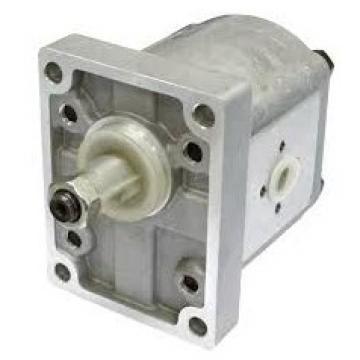 POMPA idraulica DOPPIA PER Ferranti 3284516