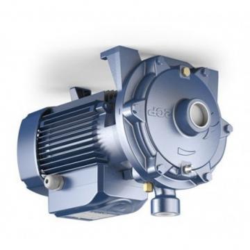 NUOVO Servosterzo idraulico pompa per HYUNDAI SANTA FE II (SM) (cm)/DSP1632/