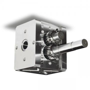 Kracht MD71-65 Pompa a Ingranaggi Idraulica 10 CM ³/ U di Alimentazione fmvz1