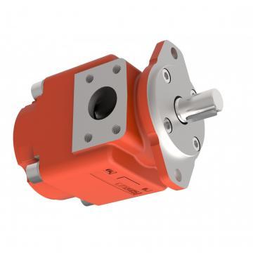 Kracht Pompa a Ingranaggi Idraulica 4,5 CM ³/ U di Alimentazione fmvz2