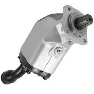 Pompa a immersione 12V 15Lt/min pompe elettropompe idrauliche sommersa