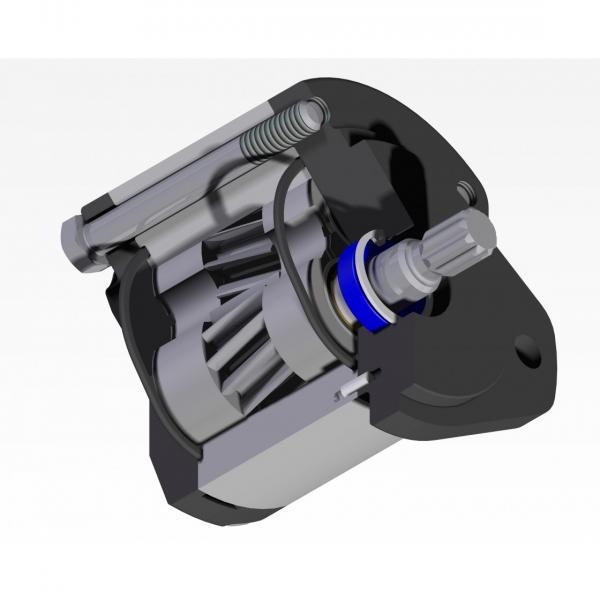 Spidan Pompa Del Servosterzo Clip (53616) Per Opel Omega B Idraulica, Sterzo