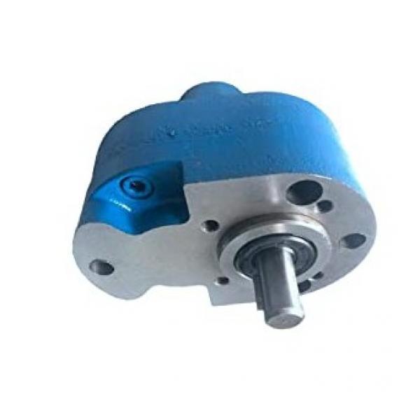 Kracht KF63 RF 9-D 15 Zahnrad-Förderpumpe Pompa Olio 1,1 Kw Idraulica