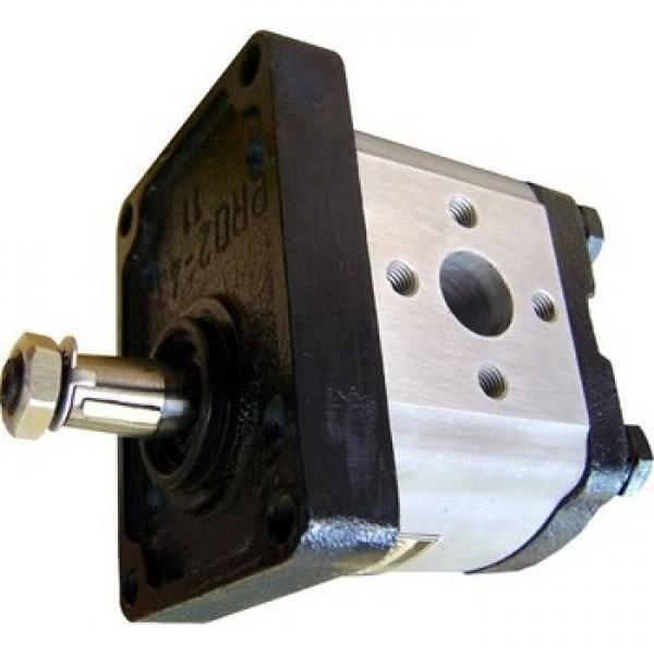 pompa idraulica casappa plp30 fiat 120/1355c