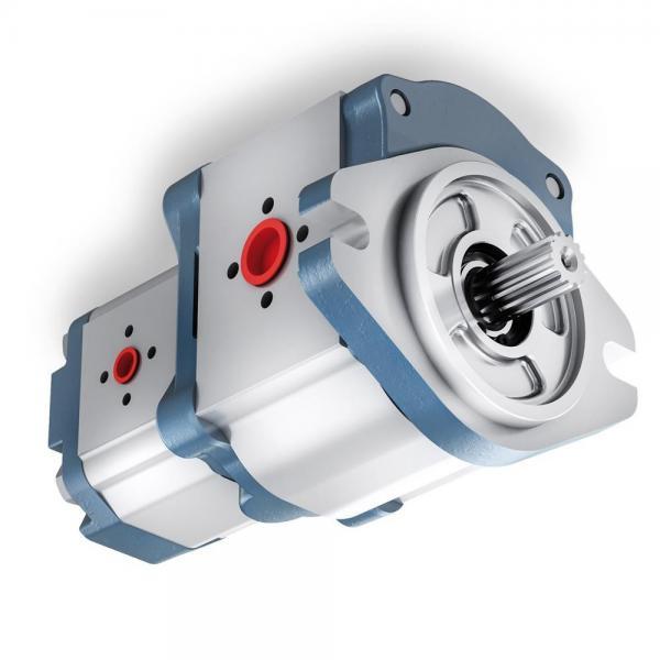 11 GPM idraulico due STADIO Hi-Low POMPA ad ingranaggi a 3600 giri/min