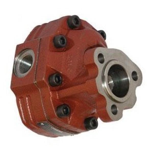 Kracht Md 90-100 Pompa a Ingranaggi Idraulica 20 cm ³/ U di Alimentazione fmvz2