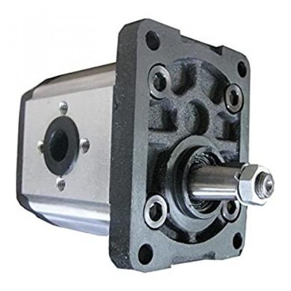 5179719 pompa idraulica ad ingranaggi