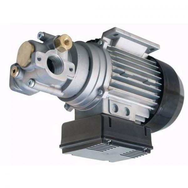 POMPA UP3 MARCO CON INGRANAGGI IN BRONZO 15 LITRI/MIN BRONZE GEAR PUMP