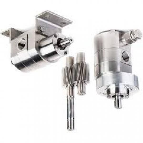 Bosch 0510225006 Pompa a Ingranaggi 4,0 Ccm , Flangia Senso Orario Facile Beschä