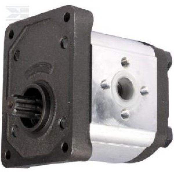 F01M101455 Kit Riparazione Pompa Carburante 1.3 Common Rail Guarnizioni Bosch