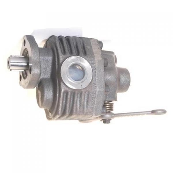 Semplice effetto Centrale Idraulica Pompa Dell'olio Ingranaggio Pack 12V Serbatoio discarica rimorchio LIFT