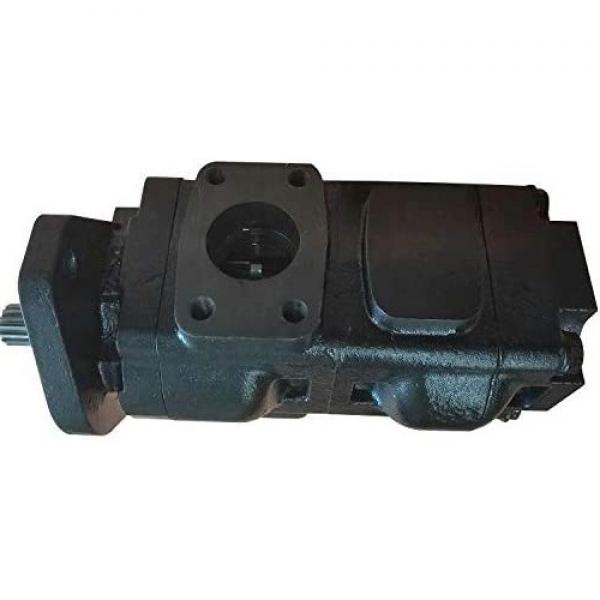 Originale Parker / Jcb Loadall Doppio Pompa Idraulica 20/925357 Prodotto IN Eu