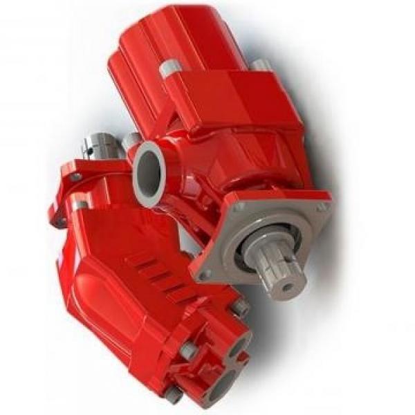 TWIN JCB pompa idraulica per JCB 3CX Taxi Nero 919/27100, 919/72400