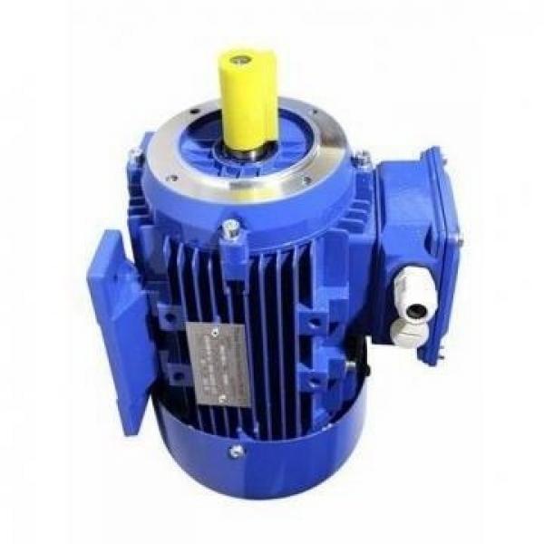 Jcb Pala Meccanica - Pompa Principale Idraulico 33/23 Cc / Rev (Parte N° 332/