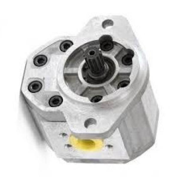 JCB Pompa Idraulica 20/903800