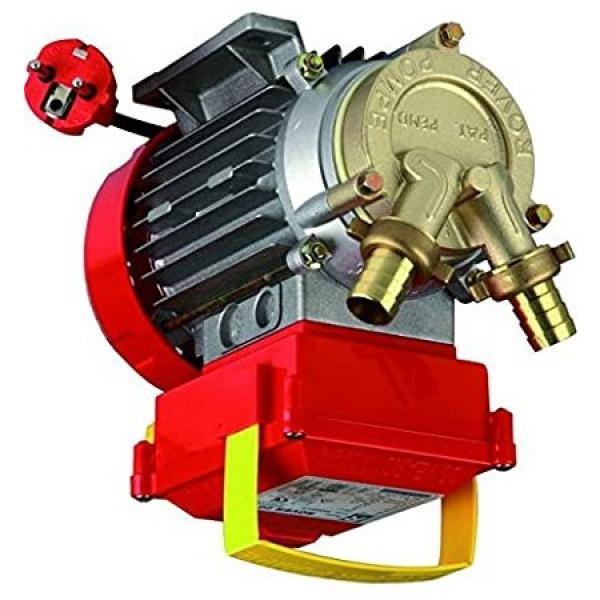 Elettropompa pompa autoclave autoadescante AGP1000 HP 1 750W tipo lungo in ghisa