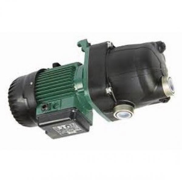 1PC FS203D POMPA AD INGRANAGGI POMPA OLIO IDRAULICO piccola pompa autoadescante 40W Power
