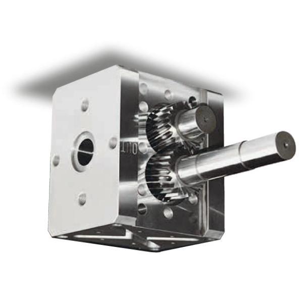 Kracht Md 80-60 Pompa a Ingranaggi Idraulica 20 CM ³/ U di Alimentazione fmvz2