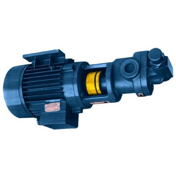 Pompa a ingranaggi impulsore da 12,2 GPM 12V - per il trasferimento di olio