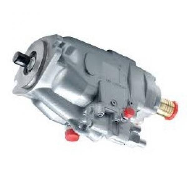 Perkins 4.108 AGRICOLA INDUSTRIALE & Motore Marino Ricostruire Kit (ed costruire)